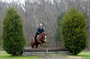 Firefly looking after an adult beginner cross country